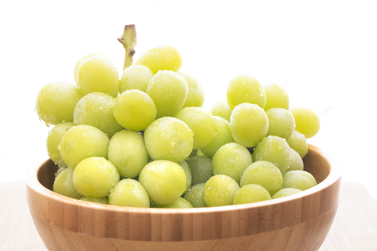 国分寺でぶどう狩り♪『清水果樹園』でシャインマスカットの摘み取りが9/12(土)から始まりました!
